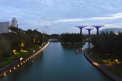Quiet. (Br@jeshKr) Tags: earlymorning dragonflylake singapore gardenbythebay marinabaysand water calm quiet brajeshart