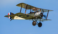 "SOPWITH PUP • <a style=""font-size:0.8em;"" href=""http://www.flickr.com/photos/53908815@N02/18485075430/"" target=""_blank"">View on Flickr</a>"