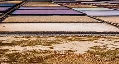 Janubio y Mondrian (pdorta) Tags: sun sol colors salt lanzarote paisaje canarias colores salinas canaryislands lanscape sal