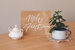 Milo + Fine 2.