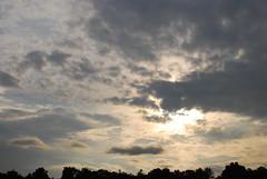 (MartMart1413) Tags: pink sunset sky silhouette rose clouds tramonto nuvole sonnenuntergang outdoor rosa himmel wolken cu prdosol cielo nubes nuvens puestadesol silueta nuages    coucherdesoleil  silhueta         sagoma allaperto   kontur  enpleinair imfreien  colorderosa alairelibre aoarlivre