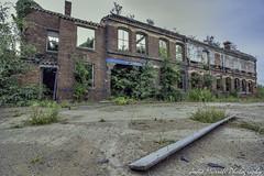 Nature's Nurture (jodee1kenobi) Tags: history abandoned neglected severn forgotten derelict on stourport