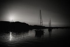 Photo of The sundowning hour.....