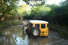 Wilpaththu National Park - BJ40 stucked in a mud hole (deeptha.net (.)) Tags: safari srilanka landcruiser fj40 bj40 wilpaththu