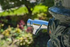 DSC_0088 (ad_n61) Tags: plaza de agua flor fuente banco zaragoza ventanas amarillo lampara cristal mesa cura roto maquina escribir coso escaner ventena