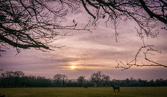 Chaceley (Matt Bigwood) Tags: chaceley gloucestershire landscape refelection sonya6000 18200 sunset