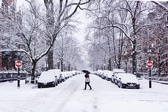 Snowstorm Strideby ((Jessica)) Tags: symmetry crossingstreet okbutfirstcoffee strideby snow newengland snowstorm street marlboroughstreet person massachusetts boston figure umbrella walking winter unitedstates buildings fallingsnow weather cold us