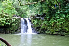 La laguna (Stefano Forassiepi) Tags: island lagoon waterfall maui hawaii lake usa viaggio forest green seta acqua cascata avventura