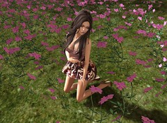 Wildflowers (Cheevy Carnell SL) Tags: sl secondlife second life virtual digital world 3d community avatar female woman outdoor flowers