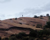 022 Alone On The Hill (saschmitz_earthlink_net) Tags: 2017 california orienteering vasquezrocks aguadulce losangelescounty laoc losangelesorienteeringclub