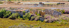 Tavira 11 June 2016-0051.jpg (JamesPDeans.co.uk) Tags: saltpans digital downloads for licence commerce algarve man who has everything ruins james p deans photography decay history coastaldecay factory prints sale europe tavira portugal digitaldownloadsforlicence jamespdeansphotography printsforsale forthemanwhohaseverything
