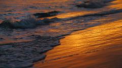 Waves of freedom (Robyn Hooz (away)) Tags: gold oro onde waves acqua water mare cuba beach beaches freedom libertà