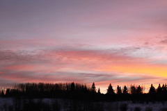 Hwy 1 Trans-Canada Highway near Calgary Alberta (nikname) Tags: canada albertacanada mountains candianmountains albertamountains skiresort albertaskiresorts hwy1 transcanadahighway sunset sunsets trees