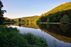 Prlude  une belle journe (Excalibur67) Tags: forest landscape nikon contemporary sigma alsace paysage reflexion reflets eaux tangs d7100 vosgesdunord forts 1770f284dcoshsmc