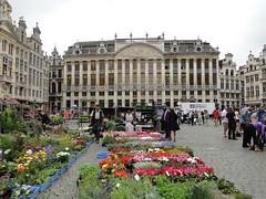Flowers on the Grote Markt (Joop van Meer) Tags: brussels grotemarkt 2015 gr12