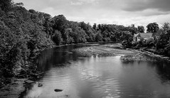The River Coquet . (wayman2011) Tags: trees houses reflections northumberland rivers fujifilm lightroom coquet walkworth rivercoquet bwlandscapes fujifilmx100