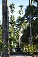 Jardim Botânico - Rio de Janeiro - Brasil - Foto: Alexandre Macieira   Riotur (Riotur.Rio) Tags: brazil tourism brasil riodejaneiro sightseeing jardimbotânico turismo botanicalgarden passeio whattodo oquefazer riotur alexandremacieira rioguiaoficial rioofficialguide jardimbotã¢nicoriodejaneiroalexandremacieira jardimbotânicoriodejaneiroalexandremacieira