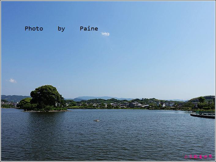 和歌山大池遊園-平池綠地公園 (22).JPG