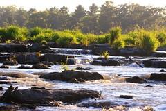 Turkey River riffle at Vernon Springs IA 854A6212 (lreis_naturalist) Tags: county turkey river howard reis iowa larry springs vernon