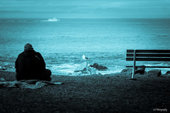 Killing time (.KiLTRo.) Tags: pacificgrove california unitedstates kiltro ocean sea seagull man people seascape sky cloud