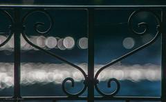 11 gennaio 2017. Roma, Villa Borghese, ringhiera intorno al laghetto (adrianaaprati) Tags: laghetto pond bokeh railing banister villaborghese roma italy