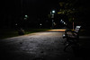 "Bench (SarahJKelleher) Tags: urban city path park bench tree outdoor outdoors outside night nighttime ""night time"" nightshot noflash toronto ontario canada shadow shadows light illumination nikon nikond7200 nikon35mm 35mm lightroom"