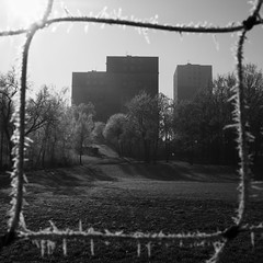 Cube (Ren-s) Tags: blackandwhite monochrome square carré format bokeh buildings batiments trees arbres flare rayon soleil winter hiver givre frost wires cables fil thread sky ciel city ville park grass parc herbe clermontferrant france europe architecture hlm housing estate housingproject pointofview pointdevue