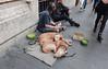 Un Po' Di Aiuto Per Vivere (meg21210) Tags: rome italy streetscene dogs panhandler homeless street