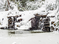 Highland Pond 3 - Snowpocalypse 2017_33