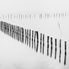 (Mat-S) Tags: piquets stacks mist brouillard roseau expositionlongue blackandwhite noiretblanc reed minimalism brume lac dannecy lacdannecy