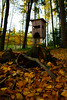 Hunting ground (rene.winkler) Tags: wantendorf baumgarten jäger hunting aelium