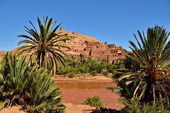 Construction techniques in pre-Saharan land (T Ξ Ξ J Ξ) Tags: morocco aitbenhaddou d750 nikkor teeje nikon2470mmf28