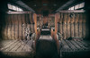2nd Class [Explore] (Martyn.Smith.) Tags: urbex decay abandoned decaying derelict train carriage seats dust grime urbanexploring canon eos 700d flickr image photo orient express