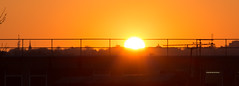 Cloudless Sunset across the rooftops 21 Jan 2017 (Sculptor Lil) Tags: canon700d dslrsingleexposure london clouds sky sunset weather