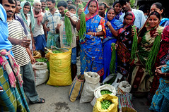 Greens for Growth (USAID | E3 | Water Office) Tags: india usaid water vegetables women asia farmers market farming h2o agriculture gender nutrition sunderbans southasia nutrients livelihoods photoshare livelihood tusharsharma bhasa waterforfood globalwaters sunderbansdelta