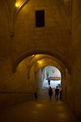 0378 - Europatour 2014 - Frankreich - Avignon - Pabstpalast (uwebrodrecht) Tags: france castle frankreich europa schloss avignon palast uwe papst brrodrecht