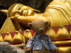 Rdi's trip to Asia (NoDurians) Tags: rdi ruedi plushie softtoy luangprabang laos lao buddha buddhism achgoood sigikid beast