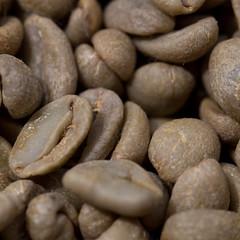 _MG_2034 (gpciceri) Tags: italy coffee breakfast bar italia caff lombardia lecco coffeshop colazione lagodicomo caffeina caffeinalecco