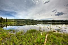Wise Men (RH Miller) Tags: trees sky usa lake water landscape loonlake wyoming reedmiller rhmiller