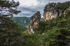 Durchblick (Panasonikon) Tags: explore sonyrx100 panasonikon frankreich cevennen landschaft landscape wald forest felsen
