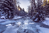 Winter morning (kubaszymik) Tags: morning ice cold river brooke snow sun forest frozen freeze iceberg canon poland vsco beskidy sopotnia trees sunrise dawn colors white blue