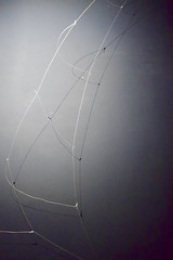 the ladder (tabithahawkes) Tags: ladder photography sculpture string fragility