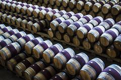Barrels (Diekk) Tags: haro españa spain europa europe rioja vino wine vineyard viñedo bodega roda bodegasroda trip travel tourism viajar viaje turismo barrels barrel barril barriles barrica barricas old viejo nikon d3100