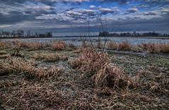 Le marais de la Dombes ... (Prx.01) Tags: étang dombes france eau marais matin nuages hiver waterscape landscape paysage fuji xm1 1024mm