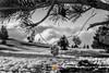 Nieve_165 (Almu_Martinez_Jiménez) Tags: nieve snow granada sierra blanco azul white contraste sky amigo friend book sunset nubes cielo escapada citybreak andalucía magia día blancoynegro estación vacaciones holiday