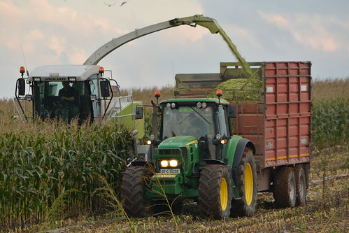 Claas Jaguar 890 SPFH filling a Redrock Silage Trailer drawn by a John Deere 6830 Tractor