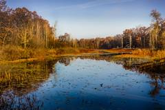 sturgeon creek fall color