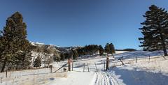 HFF - Heading Home after a Ski in the Mountains (Kim Tashjian) Tags: crazymountains fence hff montana winter snow ski recreation gate