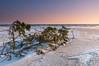 DSC_5474 (Adam Gołąbiewski) Tags: sunset hel peninsula poland pomeranian sun hitechreverse gnd cokin