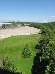 Laughing at a tree from up here. (Tim Kiser) Tags: 2014 20140622 img2271 june june2014 mahoningcounty mahoningcountyohio mahoningvalley marketstreet ohio ohiolandscape vietnamveteransmemorialbridge youngstown youngstownohio youngstownlandscape youngstownwarren youngstownwarrenmetropolitanarea aboveatree abovetrees deciduoustree directsunlight downtown downtownyoungstown expanseofpavement landscape mostlysunny northeastohio northeasternohio overgrownarea paved pavedexpanse pavement trees treesfromabove vacantland vacantlandlandscape vacantlot vacantlotlandscape view viewfromabridge weedyarea unitedstates